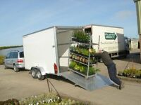 Box Trailer (Blueline) 10ft x 6ft x 7ft tandem axel trolley Danish