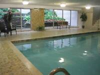 Fully furnished Studio- pool, sauna, hydro included