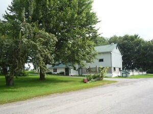 Pasture Board and Indoor Board Available - Come Join Our Family!