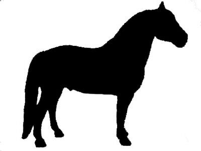 Morgan Horse Equine Window Decal Black/Clear Sticker - Repositionable / Reusable