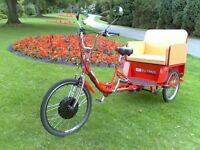 electric trike bike