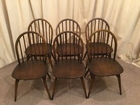 6 Ercol Windsor Chairs - Low Back Golden Dawn Dining Chairs
