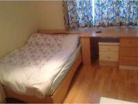 Amazing Double Room in Putney Area
