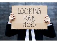 male looking for job