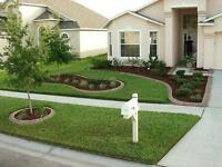 Spring Clean  up & lawn maintenance  best prices