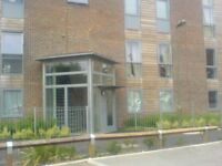 BRILLIANT 2 BEDROOM PENTHOUSE FLAT TO RENT IN MARTLESHAM WALK, COLINDALE, NW9 5BF
