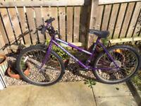 Ladies Rapid Reactor bike - needs TLC