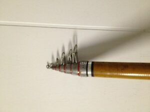 18 feet extendable fishing rod / canne a peche extensible 18 pds Gatineau Ottawa / Gatineau Area image 4