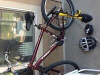 TREK 18inch Mountain Bike.