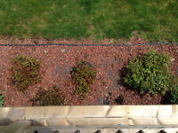 Landscaping red brick rock