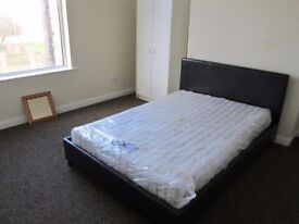 Beautiful Double Room to let