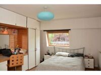 Amazing room to share! All bills included, zone 3 Wimbledon/colliers wood, great atmosphere! :)