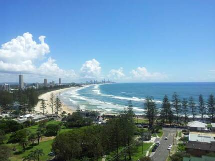 Older Flatmate Burleigh Heads High Rise Burleigh Heads Gold Coast South Preview