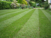 The Friendly Gardener. Lawn Treatments & Garden Maintenance. Qualified Professional Gardener