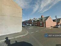 2 bedroom house in Gregson Terrace, Seaham, SR7 (2 bed) (#1238409)