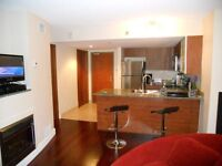 Furnished condo in Hilton's building (399 $/weekly, 1595 $/mo)