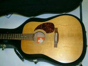Classic Norman B30 acoustic guitar and Ovation hard body case