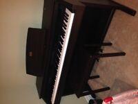 Piano Casio Celvanio AP-80R