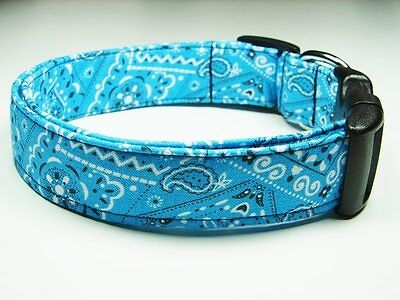Charming Sky Blue Bandana Standard Adjustable Dog Collar