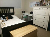 ROOM FOR RENT NEAR UVIC-300!!