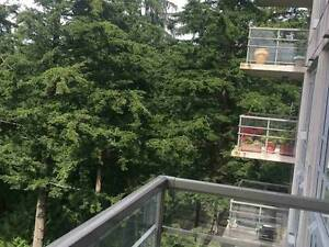Hampton Place 2 Bed+ 2 Bath Partially Furnished Rental at UBC