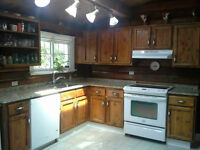 Rustic Cabinets with Granite Counter Tops