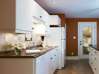 Bright Furnished Room in downtown Skeleton Park area in a 3 bdrm