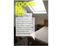 Room to Let £230 pcm inc Bills (No Contract)