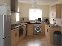 Two Double bedroom Apartment in Upper Bevendean Avenue - Prime student location!