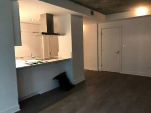 $1500 / 1br - 520ft2 - 1 Bedroom New Apartment Unfurnished