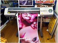 Vinyl Printing & Installation - Sign Board Bow E3