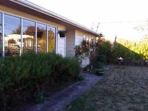 beautiful 2 BR house with garden for rent