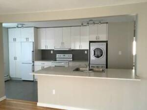 $2950 / 2br - 1250ft2 - ONE MONTH FREE RENT- 2 BDR Penthouse