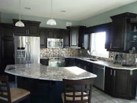 Love Your Kitchen, But Ready for a New Look?