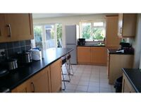 Single Room to let £380 per month including bills, near surrey university and hospital