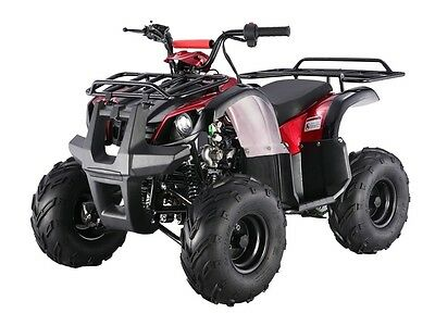 ATV mid fully auto w/ reverse 125D  *FREE S/H* !! dual working lights