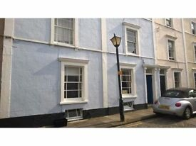 Clifton Village-Double room in our superb clean and tidy professional maisonette.