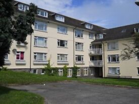 Penzance - 2 bedroom flat available to rent with DCH.