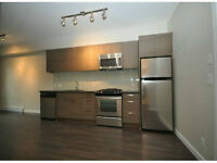 Brand new 1 bedroom downtown