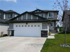 House for rent in Calmar Ab.
