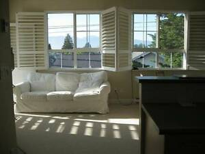 Kits/beaches fully Furnished 2BDRM 2BATH apt,near ocean. May 1st
