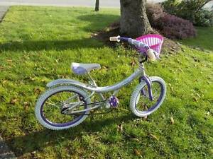 Silver Mist Bicycle