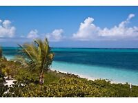Landscape Installation Supervisor Needed in Turks & Caicos, Caribbean
