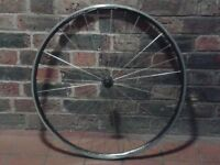 700c narrow road bike race front wheel Alex DA22 radial spoked quick-release good condition