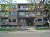 Lasalle Clean quiet modern balcony+fridge+stove available