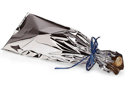 25 Mylar Metallic SILVER Wine Gift Bags Holiday New Year's Valentine's (Silver Gift Wine)