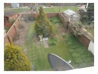 Large studio flat with garden in Navarino Road, 50m from beach & 10 mins walk from Worthing Hospital