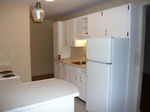 Spacious and Bright 2 bdrm - January 1, 2018