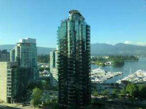 $900 / 600ft2 - Room for Rent in Coal Harbour (Vancouver)