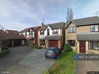 4 bedroom house in Carvers Croft, Woolmer Green, Knebworth, SG3 (4 bed)